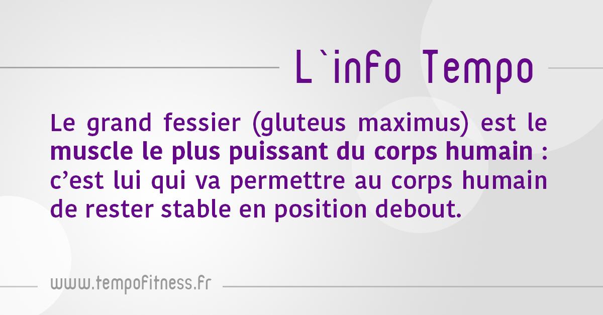 info-tempo-grand-fessier